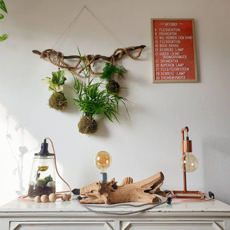 workshop Kokedama hanger maken